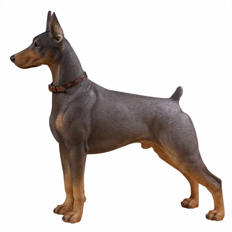 Chó Doberman Pinscher