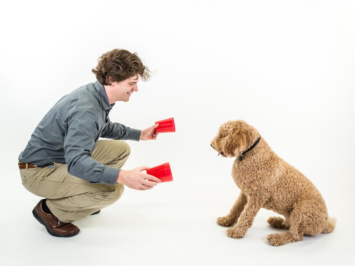 Chơi với chó